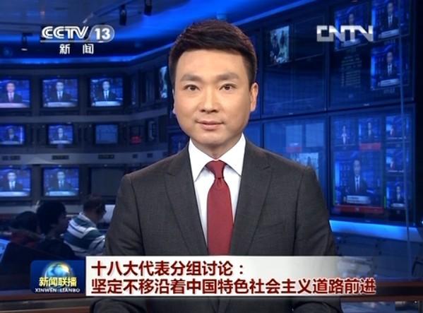 新闻联播:林松淑十八大分组讨论畅谈感受