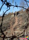 穿过了这道铁丝网,徐洪植和孙立彬还有一段山路要攀爬,不过离电表箱越来越近了,他们即将胜利。李军广摄
