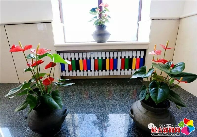 的花盆盆景,同时暖气片上绘有朝鲜族的彩条元素和精美的枕头图案.