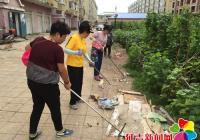清理小区垃圾 为居民提供出行环境