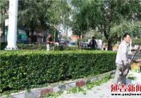 修剪社区绿化带 美化辖区环境