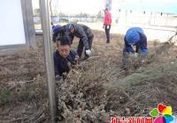 民旺社区开展在职党员进社区除草活动