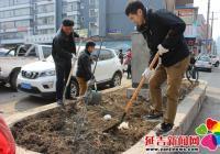 清理花坛杂草  扮靓社区环境