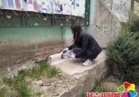 社区全民总动员  积极投药除鼠患