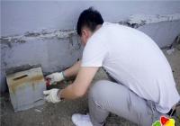 延青社区投放鼠药预防疾病传播
