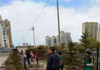 恒润社区组织开展义务植树活动