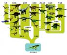 【恐龙来了】恐龙的进化历程