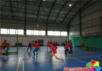丹光社区开展排球联赛庆祝党的生日