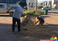 廉租房前地砖塌陷 社区积极联系协调解决