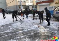 志愿服务进社区 义务清雪显真情