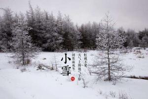 【节气•小雪】久雨重阳后 清寒小雪前