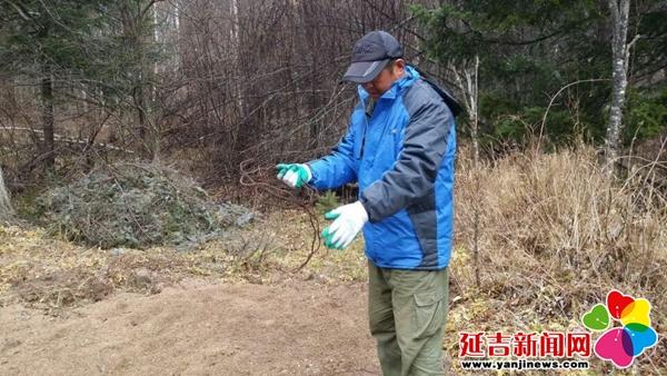 汪林金沟岭林场 清山解套为野生动物创建和谐家园