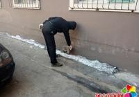 民旺社区积极组织冬季灭鼠活动