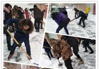 公园街道迅速开展清雪工作保障群众出行安全畅通