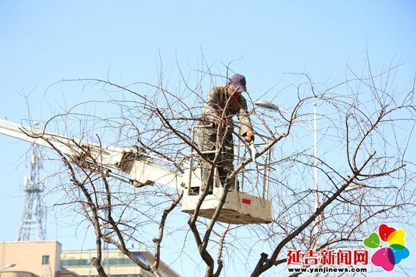 天气回暖 延吉市春季园林养护工作全面展开