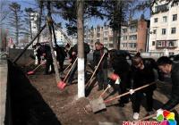 南阳社区开展春季河道专项整治活动