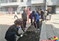 文化社区开展美化居民生活环境 建设和谐花园社区活动