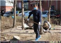 清理绿地荒草 打造花园式小区