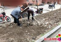 """丹明社区开展""""种花锄草、美化环境""""志愿活动"""