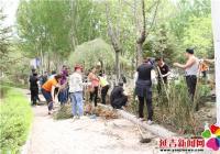 党建引领新风尚党员携手促绿化