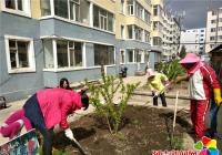 """文新社区开展""""种花苗、锄杂草、净空气、美环境""""活动"""