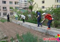 白梅社区种花种草扮靓小区环境