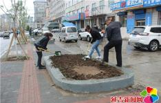 绿色环保从栽种花苗开始