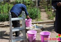 南阳社区开展除虫打药护树工作