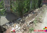园城社区整治辖区内环境卫生