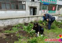 """民平社区开展""""种花种草 美化环境""""志愿服务活动"""