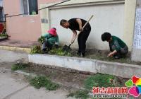 发挥党员作用 菜地变花园