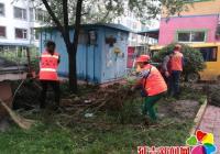 清理枯树枝 改善小区环境