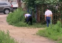 长青社区清理杂草  美化环境