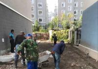 小区路面破损   社区帮助解决