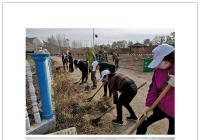 河南街道到台岩村开展环境卫生整治活动