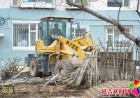 """春光社区联合多方力量开展""""拆栅栏""""志愿服务活动"""