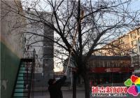 长林社区开展清理反宣品专项整治活动