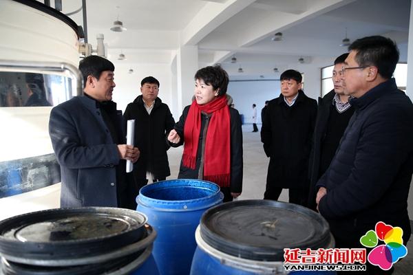 尹朝晖调研高新区项目建设情况