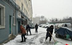 瑞雪兆丰年  社区清雪忙
