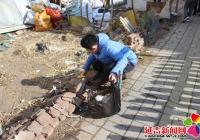 【新时代文明实践】小志愿者进社区 助力创建文明城