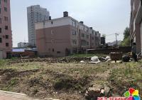 开展环境卫生整治 助力文明城市创建