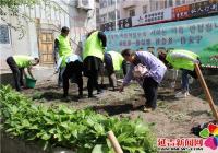 """文庆社区开展""""绿化环境 助力创城""""志愿活动"""