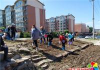 志愿服务种花草 营造舒适新环境