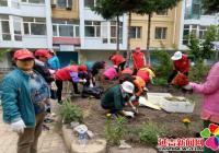 小区花坛植新绿 美化环境助创城