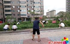 """新兴街道民旺社区开展""""清洁家园 美化环境""""志愿服务活动"""