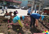 丹春社区开展助力创城志愿服务活动