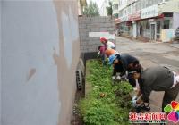 创城工作进行时 社区除草又种花