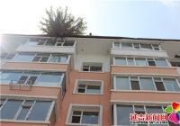 楼顶长棵树 清除消隐患