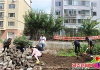 整治毁绿种菜 美化家园环境