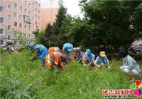 春光社区清理花坛杂草 扮靓小区环境